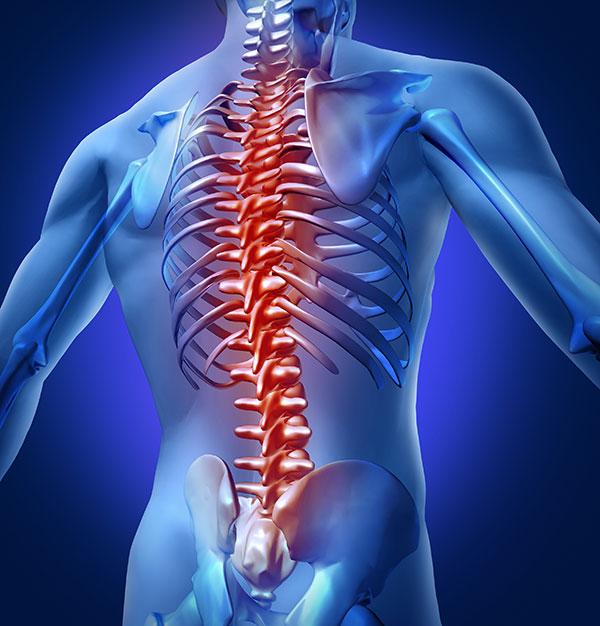 spinal medical procedures